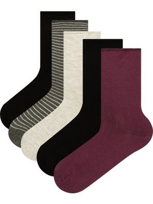 Penti Siyah-Mor Line 5li Soket Çorap