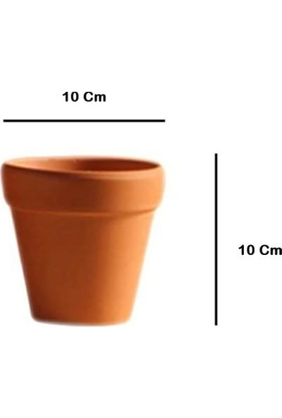 Rober Tasarım Robertasarım 5'li Tabaklı Toprak Kaktüs ve Sukulent Saksısı 10X10 cm Terracotta Toprak Saksı