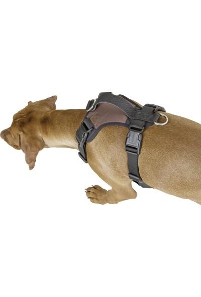 Kerbl Pulsive Köpek Gövde Tasması