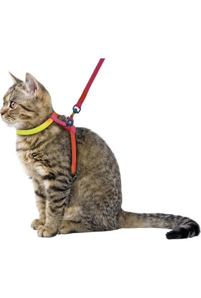 Kerbl Kayışlı Gökkuşağı Desenli Kedi Bel Tasması 120 cm
