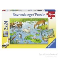 Ravensburger Puzzle / Göl Yaşamı 2x24