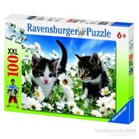 Ravensburger Sevimli Kedicikler - Super 100 Parçalı