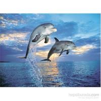 Clementoni 500 Parça Puzzle Delfini