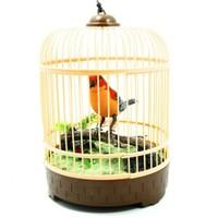 Vardem Kuş Cenneti Kafesli Öten Kuş