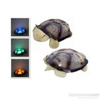 Hepsi Dahice Renk Değiştiren Müzikli Kaplumbağa Projeksiyon Gece Lambası Kahverengi