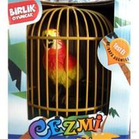 Türkçe Konuşan Papağan Cezmi
