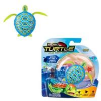 Robo Turtle Robo Turtle Kaplumbağa Mavi