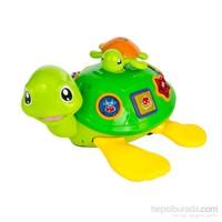 Vardem Işıklı Müzikli Eğitici Yavrulu Kaplumbağa