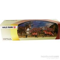 Cc Oyuncak Wild Park Kutuda Altı Parça Karışık Hayvanlar