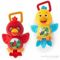 Baby Einstein Sing & Play Songbirds Oyuncak