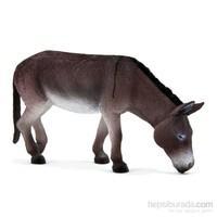 Animal Planet Eşek Model Figür