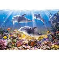 Castorland 500 Parça Dolphins Underwater