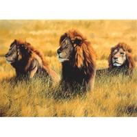 Three Lions (1000 parça)
