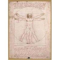 Ricordi Puzzle Schema Delle Proporziomi,Da Vinci (1500 Parça)