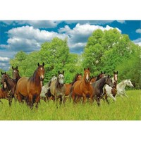 Jumbo Wild Horses In The Field (1000 Parça)
