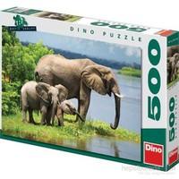 Elephant Family (500 Parça Puzzle)