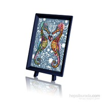 Pintoo Renkli Denizatları - 150 Parça Xs Puzzle