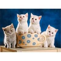 Castorland 500 Parça Süt Bekleyen Kediler