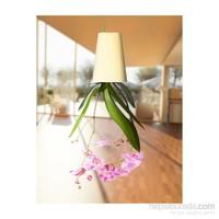 Greenmall Sky Planter - Ters Saksı - Beyaz Plastik Saksı