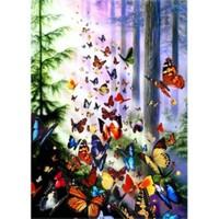 Anatolian Kelebek Ormanı / Butterfly Woods
