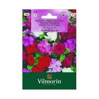 Vilmorin Camgüzeli Çiçek Tohumu