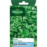 Vilmorin İtalyan Maydanoz - İri Yapraklı Tohumu