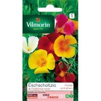 Vilmorin Acem Lalesi Karışık Renkli Çiçek Tohumu