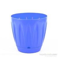 Plantistanbul Papatya Saksı Mavi Renk, 3 Litre, 3 Adet