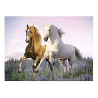 Clementoni Puzzle Free Horses (500 Parça)