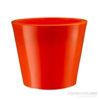 Teraplast Tronco Brıll (Rosso Cardınale) 3 Plastik Saksı
