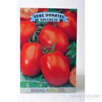 Birtaş Domates (Sobe Salçalık) Tohumu