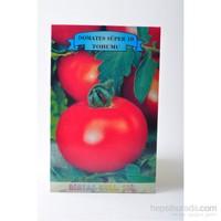 Birtaş Domates (Süper 10) Tohumu