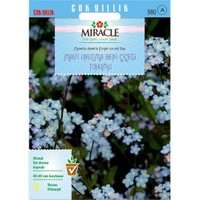 Miracle Tohum Mavi Unutma Beni Çiçeği Tohumu (800 Tohum)