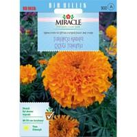 Miracle Tohum Turuncu Kadife Çiçeği Tohumu(290 Tohum)