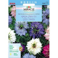 Miracle Tohum Karışık Renkli Çörek Otu Çiçeği Tohumu (850 Tohum)