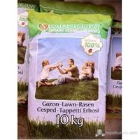 Plantistanbul 6 Karışım Class Çim Tohumu 10Kg