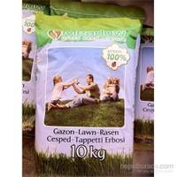Plantistanbul 6M Çim Tohumu 10 Kg