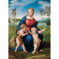 Madonna Cardellıno (1000 Parça)