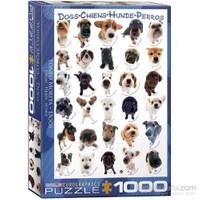 Eurographics Köpek Irkları 1000 Parça Puzzle
