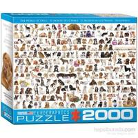 Eurographics 2000 Parça Puzzle Dünya Köpekleri