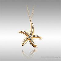 Sheamor Deniz Yıldızı Tek Sıra Taşlı Rose Altın Kolye