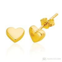 Bella Gloria Kalp Altın Küpe (Pe78117)