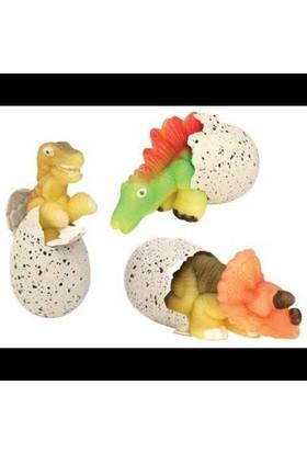 Uygun Suda Büyüyen Sihirli Dinazor Yumurtası