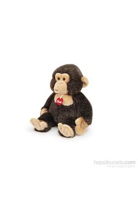 Trudi Şempanze Evaristo 33cm