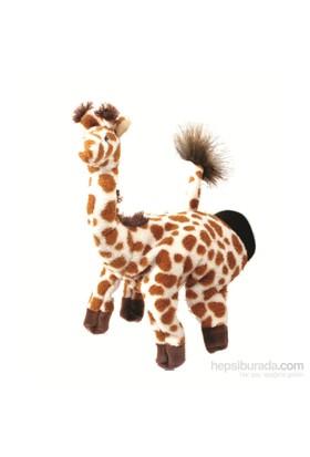 Beleduc El Kuklası-Zürafa