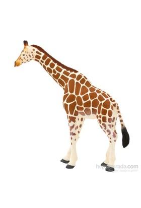 Animal Planet Zürafa Model Figür