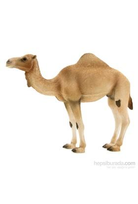 Animal Planet Arap Devesi Model Figür