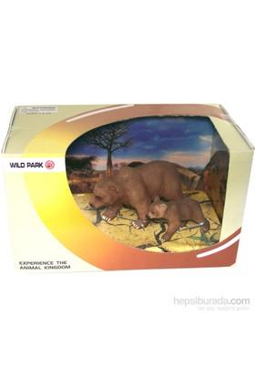 Cc Oyuncak Wild Park Kutuda İki Parça Ayı Ve Yavrusu