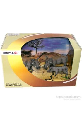 Cc Oyuncak Wild Park Kutuda Üç Parça Yaban Domuzu Ailesi