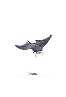 National Geographic Manta